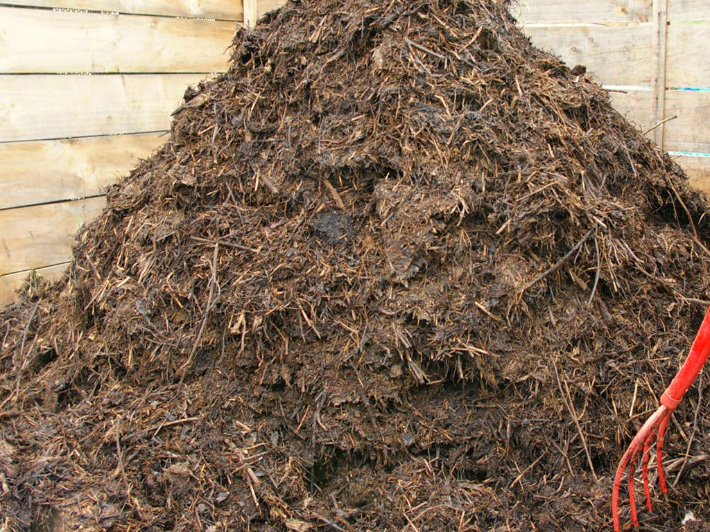5-kompost-luchshee-i-samoe-dostupnoe-organicheskoe-udobrenie.jpg